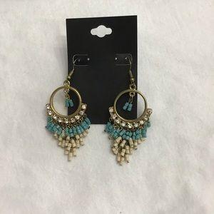 One pair of cute earrings